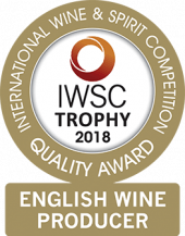 English Wine Producer Of The Year Trophy 2018
