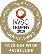 English Wine Producer Of The Year Trophy 2015