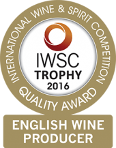 English Wine Producer Of The Year 2016