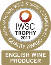 English Wine Producer Of The Year Trophy 2017