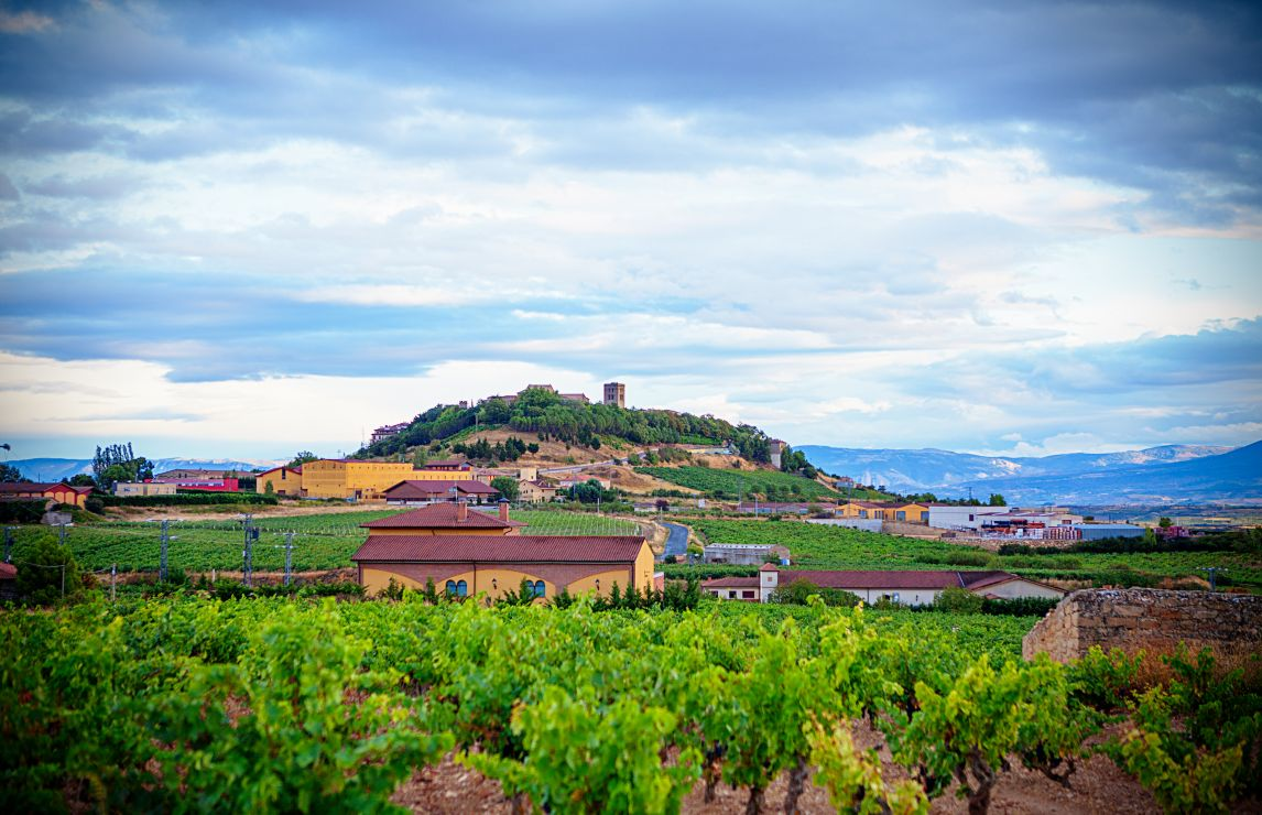 Top wines of Spain and Portugal unveiled in latest IWSC results announcement