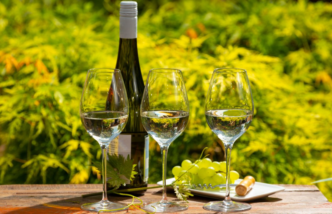 Top 15 German white wines, from Riesling to Silvaner