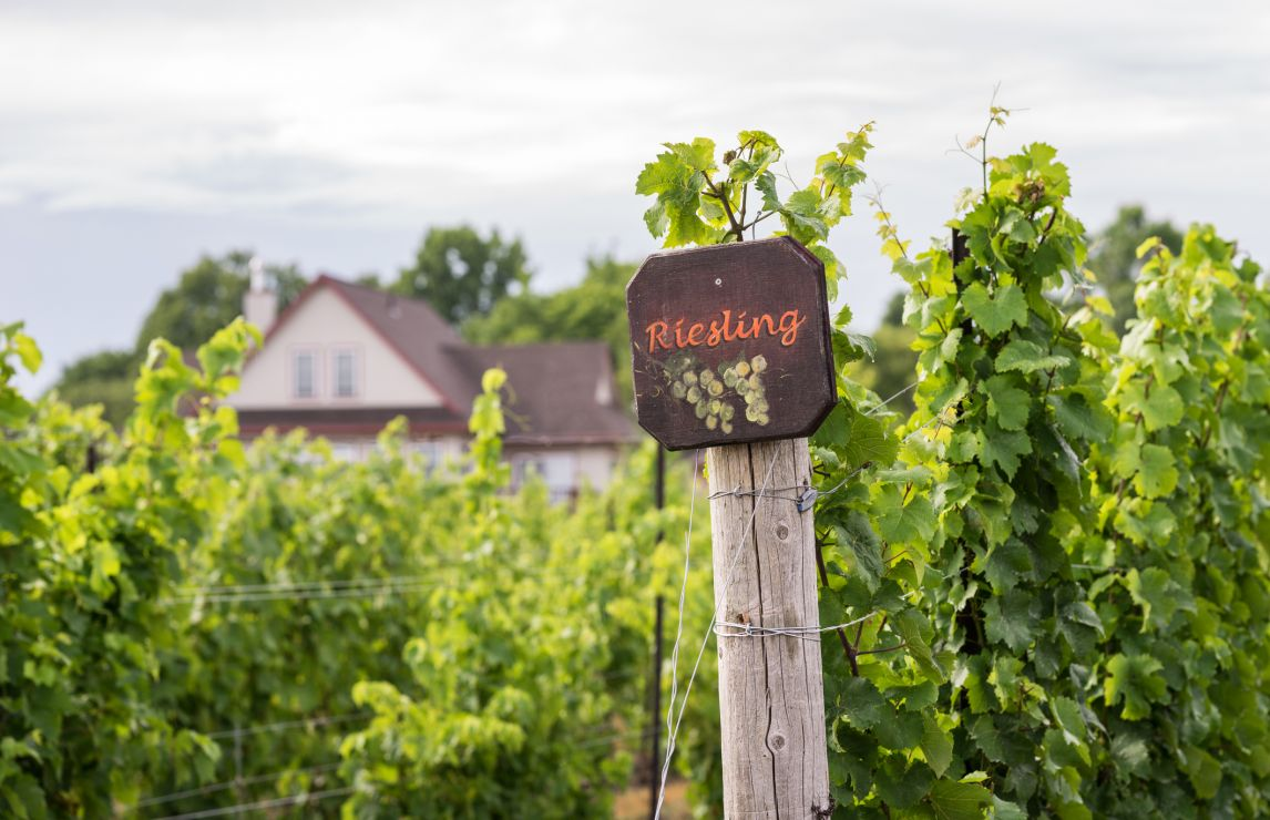 Riesling outside Germany