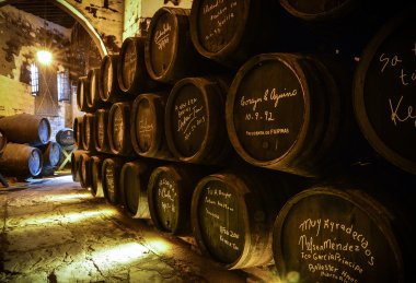 Fortified Wine Producer 2019: Bodegas Fundador
