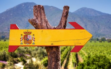 Best Spanish reds outside Rioja